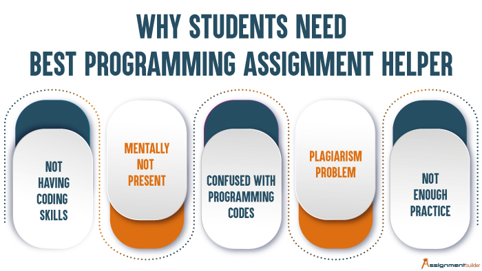Why Students Need Best Programming Assignment Helper