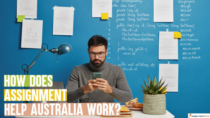 How Does Assignment Help Australia Work