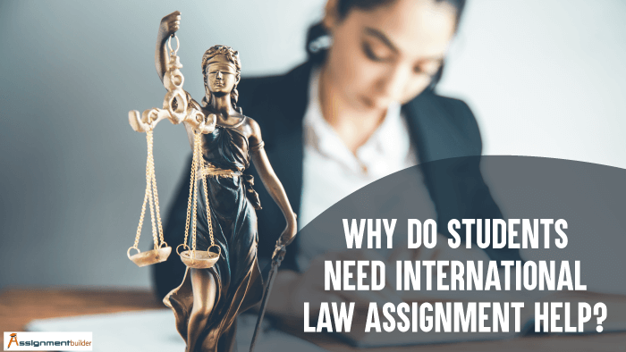 Why Do Students Need International Law Assignment Help