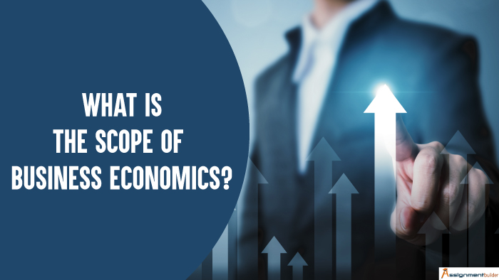 What is the Scope of Business Economics